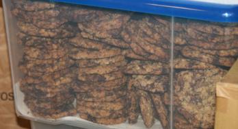 Afbeelding: koekjes. Ze worden gul uitgedeeld door het meisje