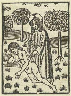 De Schepping van Eva, anoniem, 1490 - 1510  houtsnede