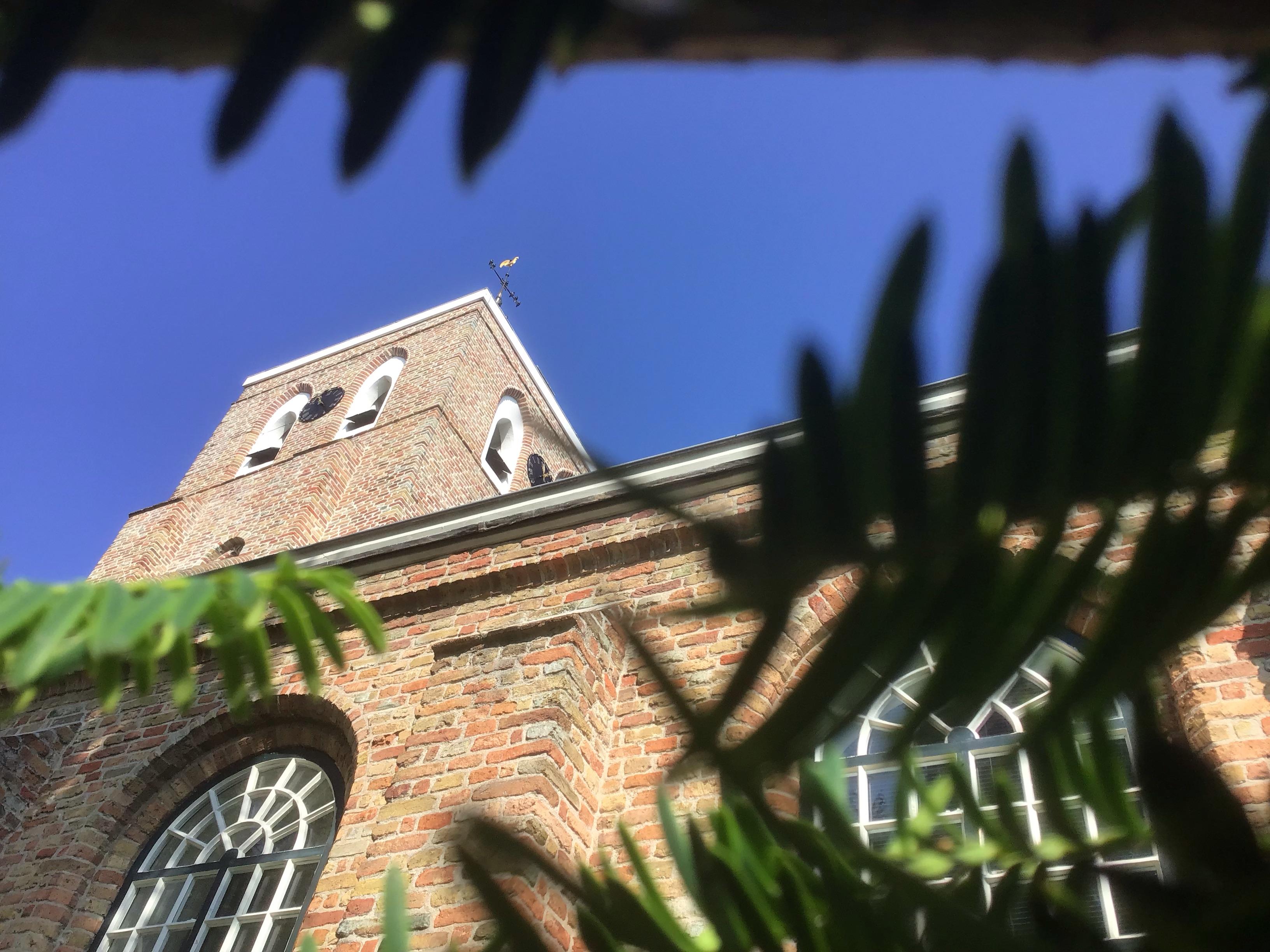 Zicht op blauwe hemel en kerktoren tussendoor takken